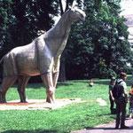 Paraceratherium © N. Bertelsbeck