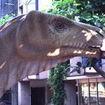 Iguanodon  © N. Bertelsbeck