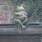 Dass Märchen vom Froschkönig