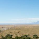 Der Blick zurück zum Krater, vom Aussichtspunkt, beim Eingang des Serengeti-Parks.