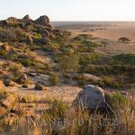 Vor uns liegt nun die sich öffnende Savanne der Serengeti.