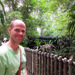 Singapore Zoo: Affen duerfen frei rumlaufen