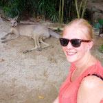Singapore Zoo: Kaenguruh