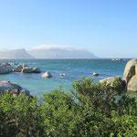 Boulders Beach mit Südafrikanischen Pinguinen