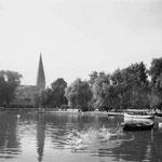 Großer Eutiner See: einer der beiden Seen, die Eutin umgeben; hier fließt unterirdisch der Stadtgraben, ein teils künstlicher, teils natürlicher Graben, der das Stadtgebiet vom sumpfigen Umland trennt.