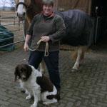 Mein neues Fahrpferd mit Vorbesitzerin und ihrem Hund