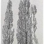 2.- La voz del Árbol, Prólogo (II), Aguafuerte, 18,5 x 12 cm., soporte 38 x 27 cm.