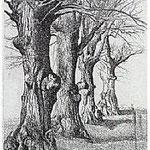5.- La voz del Árbol (II), Aguafuerte, 18,5 x 12 cm., soporte 38 x 27 cm.