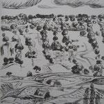 8.- Desde Mi Rincón (VII), Litografía, mancha 50 x 37,5 cm., soporte 50 x 37.5 cm.