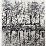 10.- La voz del Árbol (VII), Aguafuerte, 18,5 x 12 cm., soporte 38 x 27 cm.