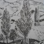 7.- Desde Mi Rincón (VI), Litografía, mancha 50 x 37,5 cm., soporte 50 x 37.5 cm.