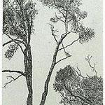 3.- La voz del Árbol, Introducción, Aguafuerte, 18,5 x 12 cm., soporte 38 x 27 cm.