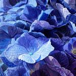 Blauwe hortensias, Acrylverf op linnen, 110cm x 100cm,  2010. VERKOCHT