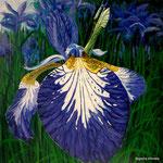 Iris azul 2, 60cm x 60cm, acrilico sobre panel, 2010, VERKOCHT.
