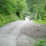 Entlang des Weges befinden sich auch einige Abzweigungen, wie nach Kuens oder zum Gasthof Walde