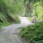 Letzter Anstieg vor Longfall. Links geht es weiter Richtung Bockerhütte, Spronserseen. Rechts Longfall