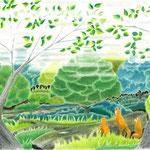 絵本「ゲンの森」-森の朝(色鉛筆)