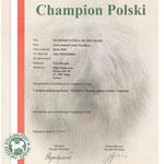 Poland Champion