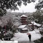 1位 雪の明王院・雪