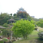 後楽園から岡山城を