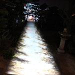 光り輝く参道