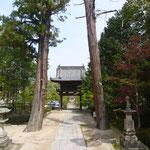 山門と門のような杉