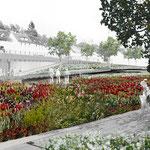 Landesgartenschau - Terrassengärten