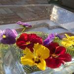 花が見えるベランダ