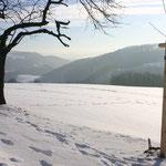 Blick ins Müglitztal vom Winzerweg in Maxen. Foto: © J. Tronicke