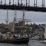 Ferry Race im Hafen