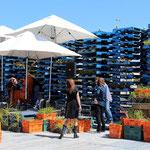 Auf einer leeren Fläche nach dem Erdbeben entstehen kulturelle Projekte