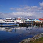 Die Kreuzfahrtschiffe im hafen von Ushuaia