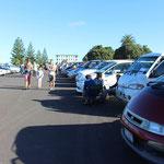 Über 250 Autos warten auf neue Besitzer