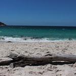Wineglas Beach