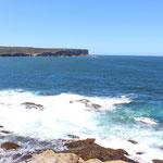 Am South Head geht es aus dem Hafenbecken auf den offenen Oyean hinaus