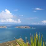 Die Aussicht am Cape Reinga