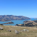 Die Banks Peninsula