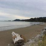 Die Wainui Bay