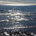 ...aber bei einem Strandspaziergang gab es ein paar schöne Bilder.