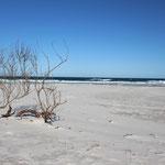 Denison Beach