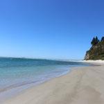Der Strand von Waitati