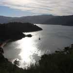 Queen Charlotte Drive von Havelock nach Picton: