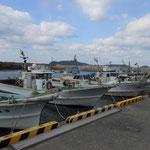 津屋崎漁港。毎週日曜日の朝に行われる朝市では、その日に取れた新鮮な季節の魚や野菜を販売しています。地元の方のみならず、遠方からもこの朝市へ多くの方がいらっしゃいます。
