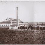 豊村酒造第二工場(現在の「西鉄ストア津屋崎店」と駐車場)。大きな酒樽がズラリと並べられている。右の屋根の向こうに見えるのは在自山。