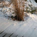 A la découverte de la Somme avec Google Earth - Page 3 Le-jardin-zen-sous-la-neige