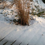 Le jardin Zen sous la neige