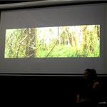 2014 AAANZ conference presentation, Tasmania