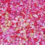 Pétales de rosiers