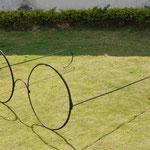 Gegenüber in der Fotogalerie liegt eine überdimensionale Gandhi Brille auf dem Rasen