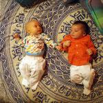 Theo und sein Kumpel Max (3 Wochen älter als Theo)